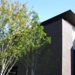 住宅建築で成功するための法則(その2)