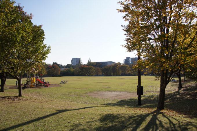 芝生の広場の向こうに見えるのは、東京都練馬区の街並み。